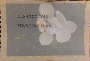 Magnolia flower postcard